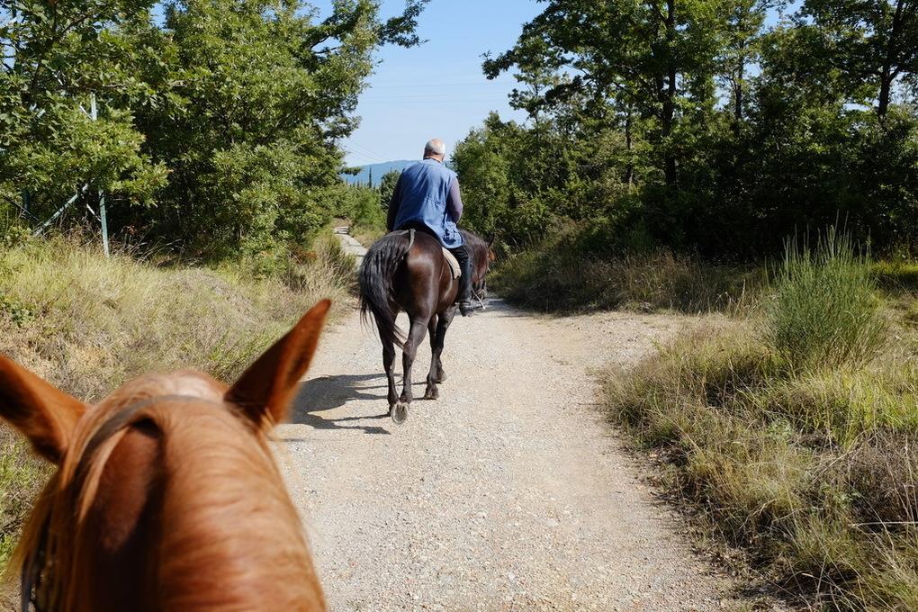 Passeggiata cavallo terme val dorcia