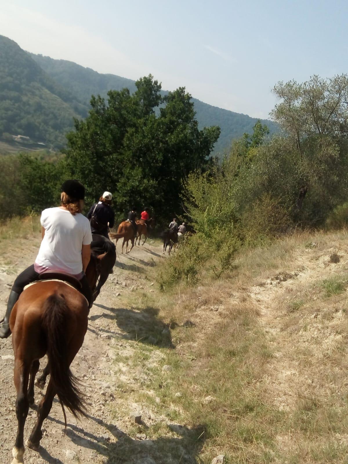 Bomarzo cavallo